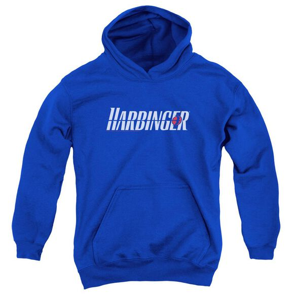 Harbinger Logo Youth Pull Over Hoodie Royal