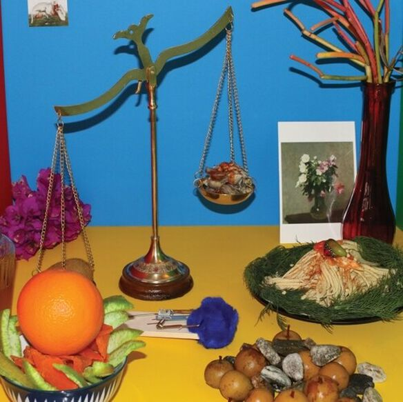 Wreck & Reference - Absolute Still Life