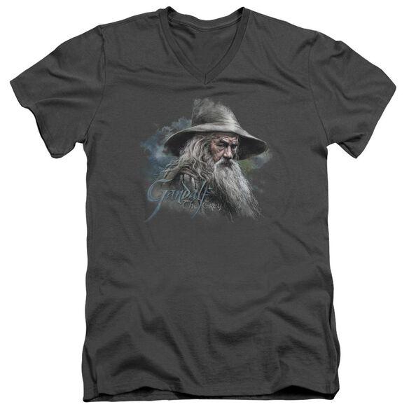 The Hobbit Gandalf The Grey Short Sleeve Adult V Neck T-Shirt