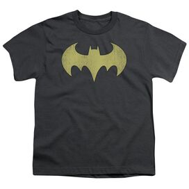 Dc Batgirl Logo Distressed Short Sleeve Youth T-Shirt
