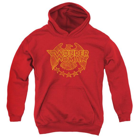 Dc Wonder Eagle Youth Pull Over Hoodie