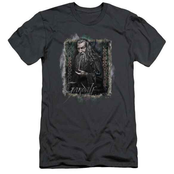 The Hobbit Gandalf Short Sleeve Adult T-Shirt
