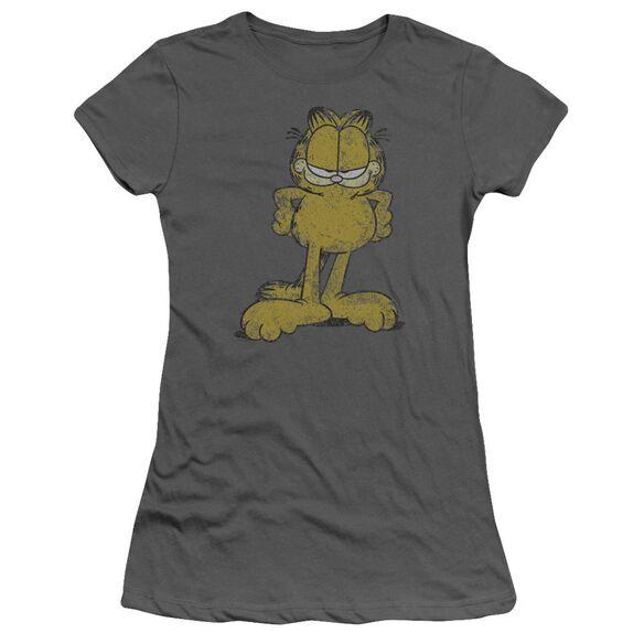Garfield Big Ol' Cat Short Sleeve Junior Sheer T-Shirt