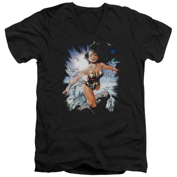 Jla Of Themyscira Short Sleeve Adult V Neck T-Shirt