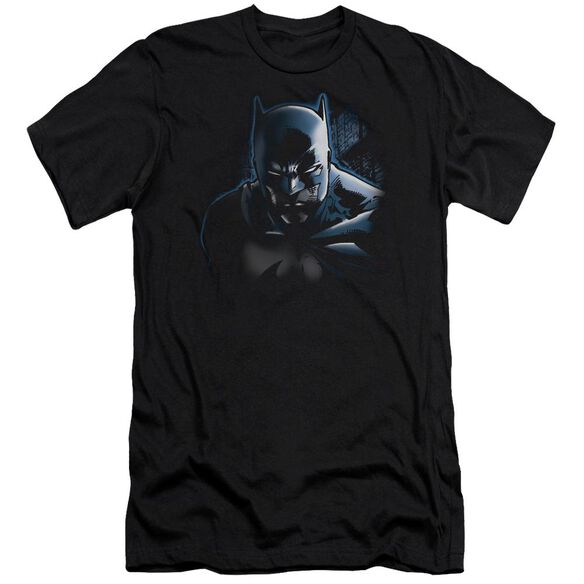 Batman Don't Mess With The Bat Short Sleeve Adult T-Shirt