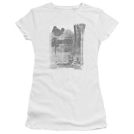 Woodstock Hippies In A Field Short Sleeve Junior Sheer T-Shirt