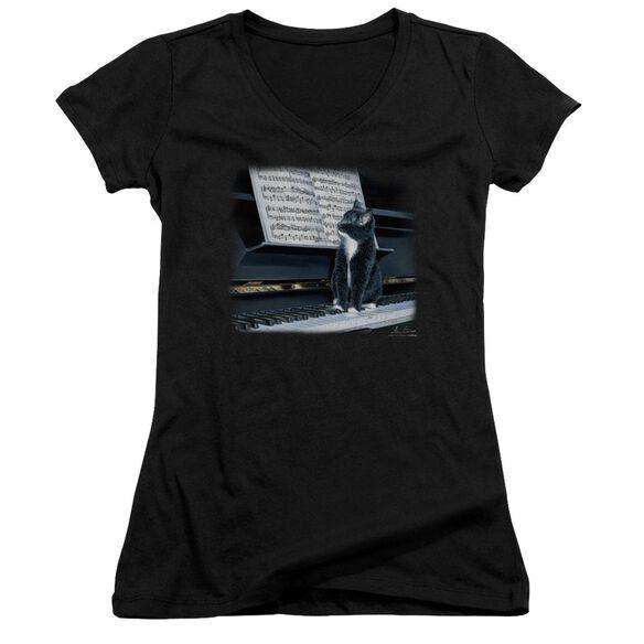 Wildlife Kitten On The Keys Junior V Neck T-Shirt