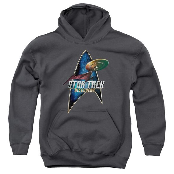 Star Trek Discovery Discovery Deco Youth Pull Over Hoodie