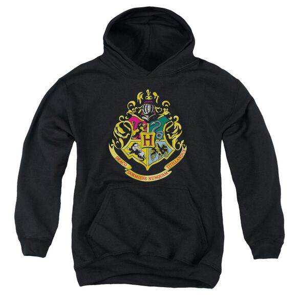 Harry Potter Hogwarts Crest Youth Pull Over Hoodie
