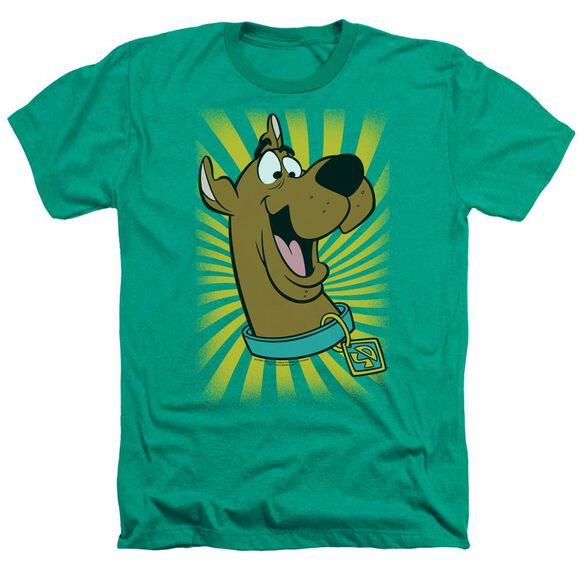 Scooby Doo™ T Shirt Adult Heather Kelly