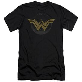 Wonder Woman Movie Distressed Logo Short Sleeve Adult T-Shirt