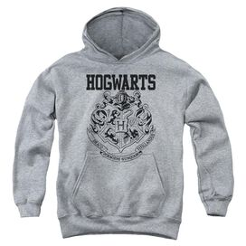 Harry Potter Hogwarts Athletic Youth Pull Over Hoodie Athletic