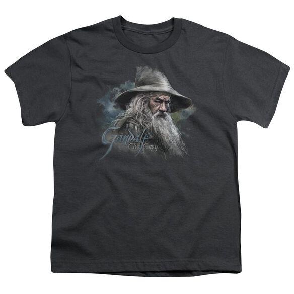 The Hobbit Gandalf The Grey Short Sleeve Youth T-Shirt