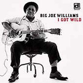 Big Joe Williams - I Got Wild