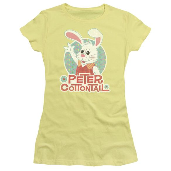 Here Comes Peter Cottontail Peter Wave Short Sleeve Junior Sheer T-Shirt