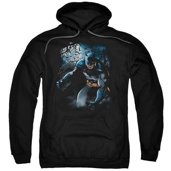 Batman Light Of The Moon Adult Pull Over Hoodie