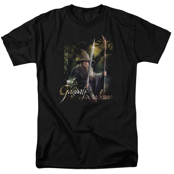 Hobbit Sword And Staff Short Sleeve Adult T-Shirt