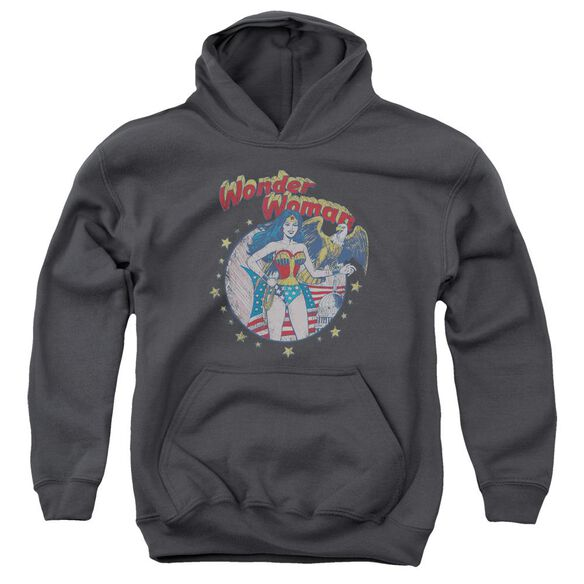 Jla At Your Service Youth Pull Over Hoodie
