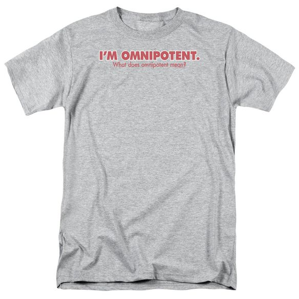 Omnipotent Short Sleeve Adult Athletic Heather T-Shirt