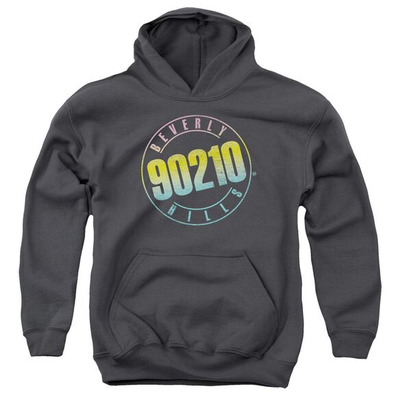 90210 Color Blend Logo Youth Pull Over Hoodie