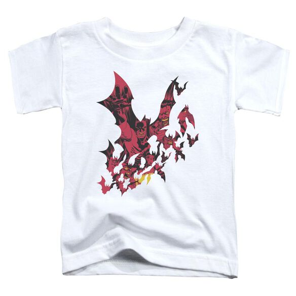 Batman Broken City Short Sleeve Toddler Tee White Sm T-Shirt