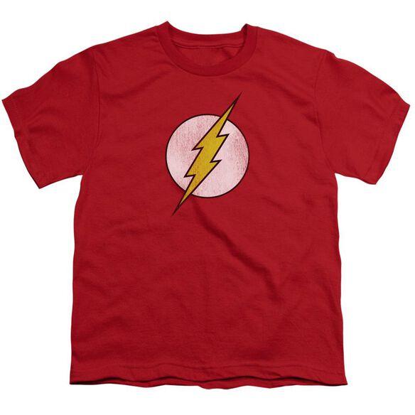 Dc Flash Flash Logo Distressed Short Sleeve Youth T-Shirt