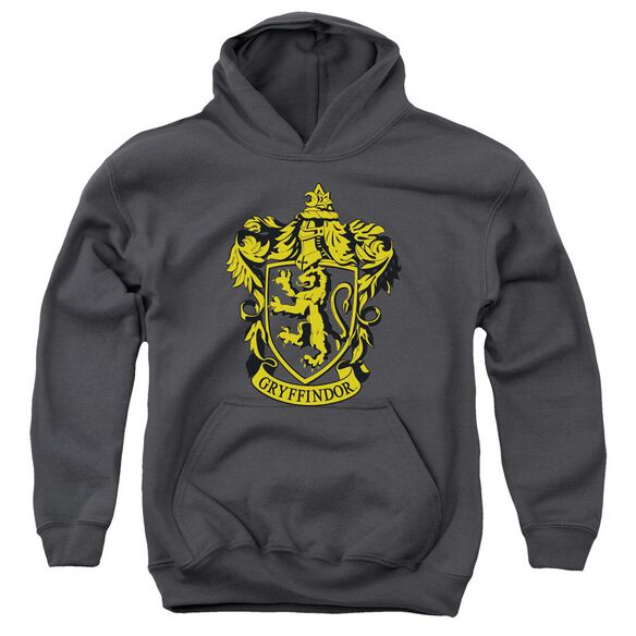 Harry Potter Gryffindor Crest Youth Pull Over Hoodie