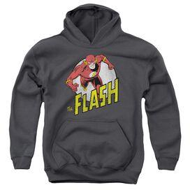 Dc Flash Run Flash Run Youth Pull Over Hoodie