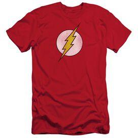 Dc Flash Logo Distressed Short Sleeve Adult T-Shirt