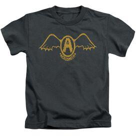 Aerosmith Retro Logo Short Sleeve Juvenile T-Shirt