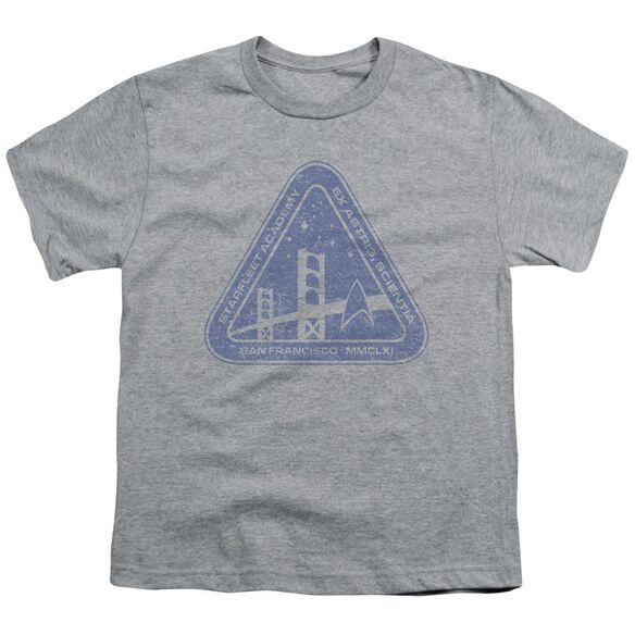 Star Trek Distressed Logo Short Sleeve Youth Athletic T-Shirt