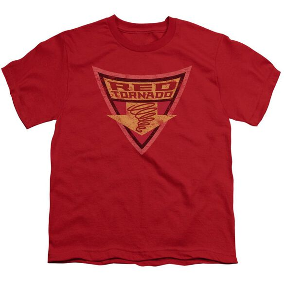 Batman Bb Tornado Shield Short Sleeve Youth T-Shirt