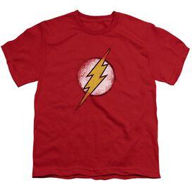 Jla Destroyed Flash Logo Short Sleeve Youth T-Shirt