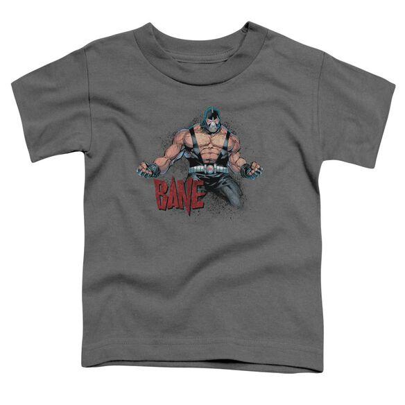 Batman Bane Flex Short Sleeve Toddler Tee Charcoal Sm T-Shirt