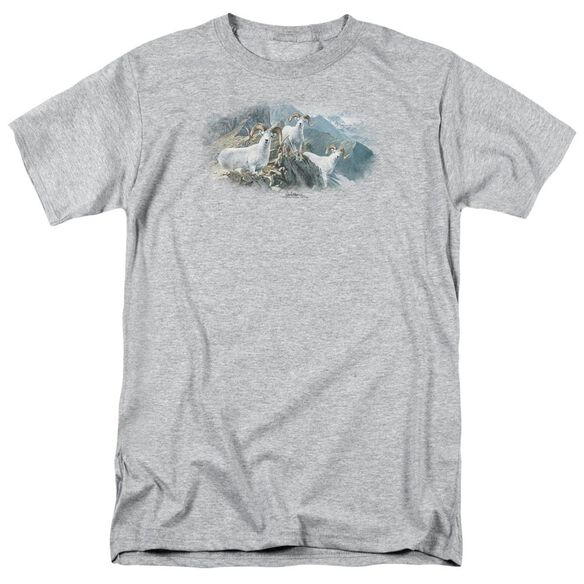 Wildlife High Trails Dall Sheep Short Sleeve Adult Athletic T-Shirt