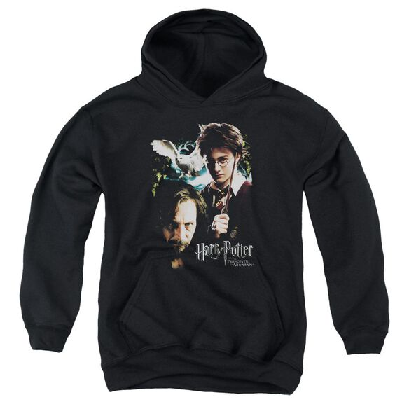 Harry Potter Harry And Sirius Youth Pull Over Hoodie