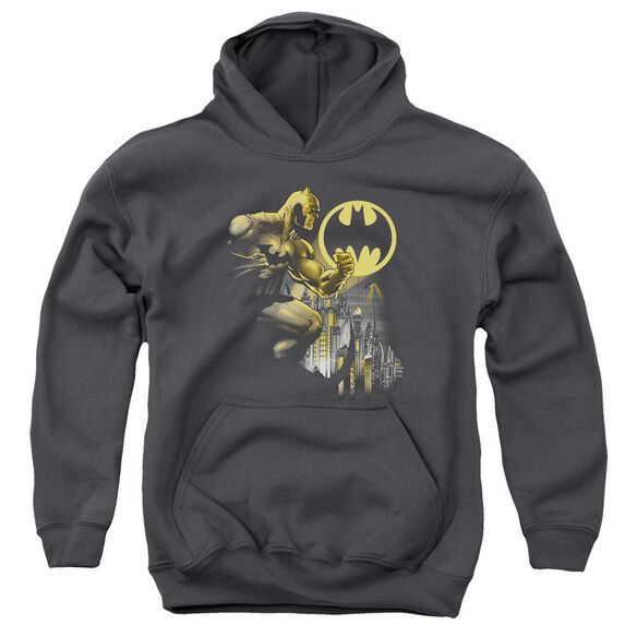 Batman Bat Signal Youth Pull Over Hoodie