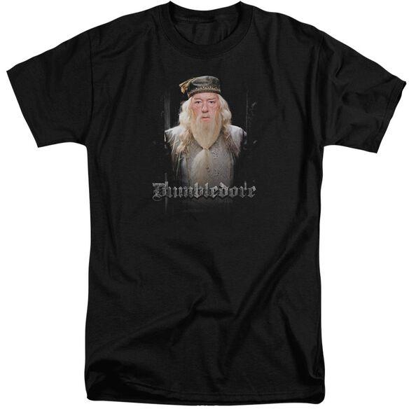 Harry Potter Dumble Doors Short Sleeve Adult Tall T-Shirt