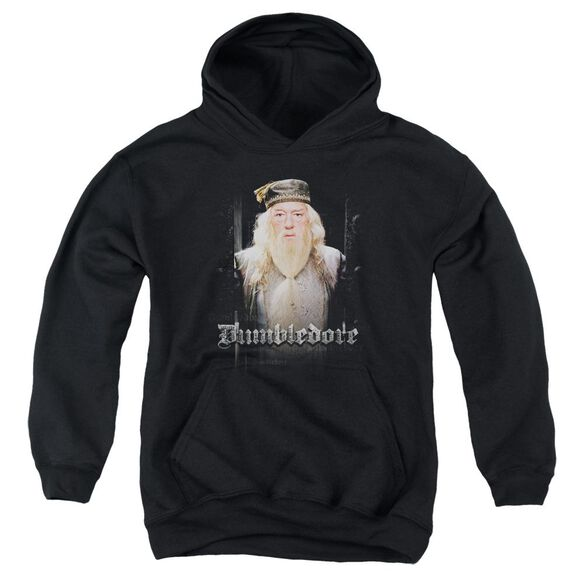Harry Potter Dumble Doors Youth Pull Over Hoodie