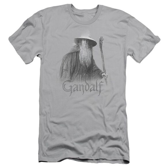 Lor Gandalf The Grey Short Sleeve Adult T-Shirt