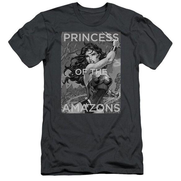 Jla Princess Of The Amazons Short Sleeve Adult T-Shirt