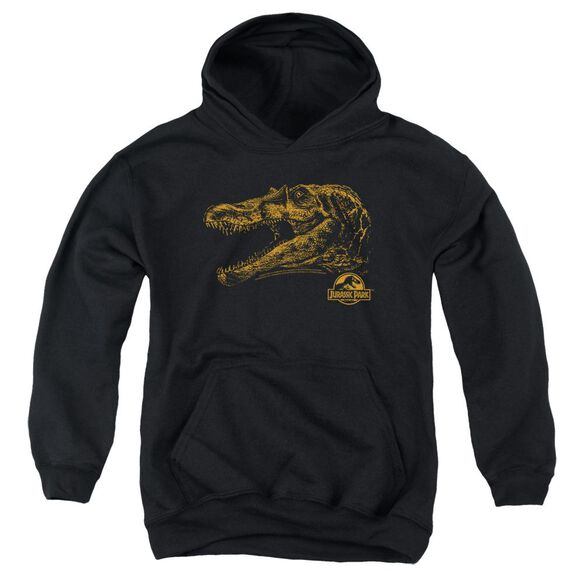 Jurassic Park Spino Mount Youth Pull Over Hoodie