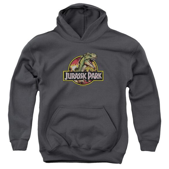 Jurassic Park Retro Rex Youth Pull Over Hoodie