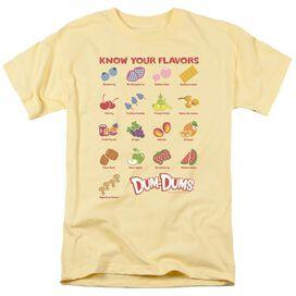 DUM DUMS FLAVORS - S/S ADULT 18/1 T-Shirt