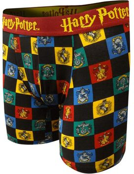 Harry Potter Checkered Hogwarts Houses Men's Boxers