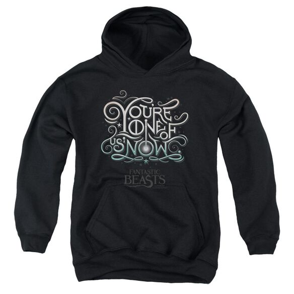 Fantastic Beasts One Of Us Youth Pull Over Hoodie