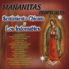 Sentimiento Chicano y los Indomables - Mananitas Tropicales