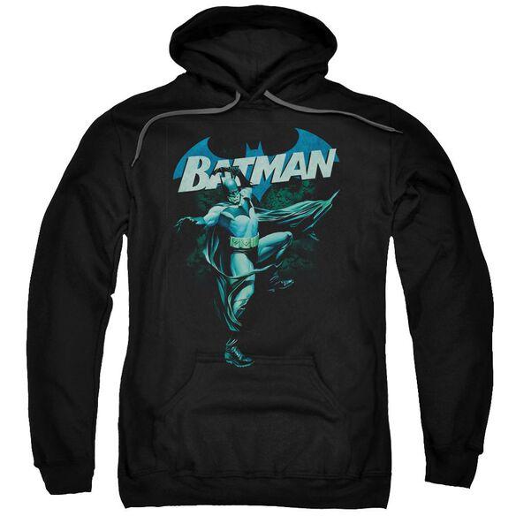 Batman Blue Bat Adult Pull Over Hoodie