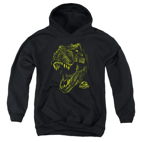 Jurassic Park Rex Mount Youth Pull Over Hoodie