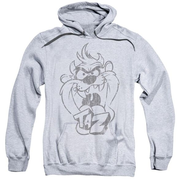 Looney Tunes Faded Taz Adult Pull Over Hoodie Athletic